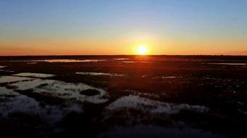 Discover the Palm Beaches TV Spot, 'The Everglades'
