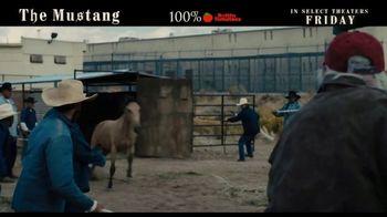 The Mustang - Alternate Trailer 1