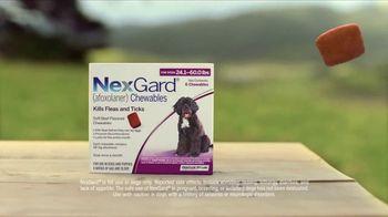 NexGard Chewables TV Spot, 'Confidence' Song by Ben E. King - Thumbnail 2