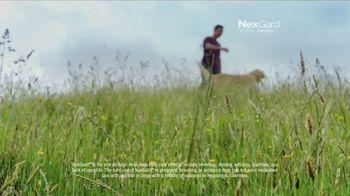 NexGard Chewables TV Spot, 'Confidence' Song by Ben E. King - Thumbnail 5
