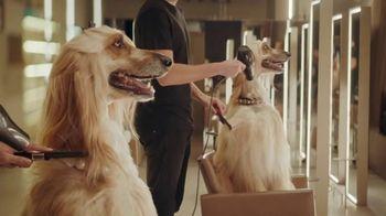 E*TRADE Prebuilt Mutual Fund Portfolios TV Spot, 'Doggie Spa Day' - Thumbnail 1