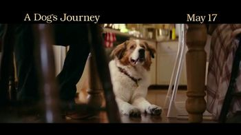 A Dog's Journey - Alternate Trailer 10