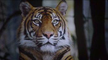 Smithsonian National Zoo TV Spot, '2019 Bite Night' - Thumbnail 1