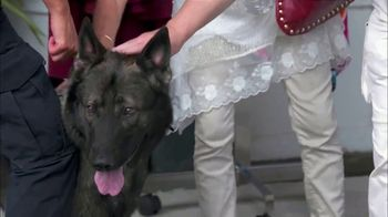 PETCO TV Spot, 'A&E: Canine Officers' - Thumbnail 5
