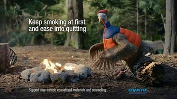 Smoking quitting