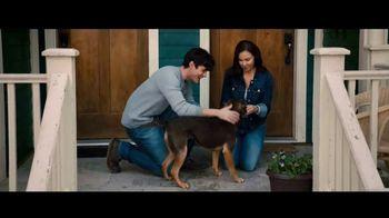 A Dog's Way Home - Alternate Trailer 4