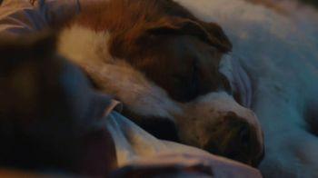 XFINITY Home TV Spot, 'Baxter' - Thumbnail 3