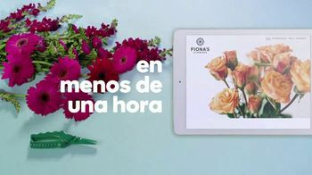GoDaddy TV Spot, 'Crea tu propia página web' canción de Coop [Spanish] - Thumbnail 5