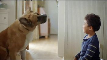 Clorox TV Spot, 'Pet Playtime'