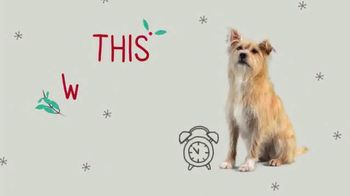 PetSmart TV Spot, 'This Weekend: Last-Minute Gifts' - Thumbnail 2