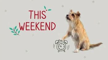 PetSmart TV Spot, 'This Weekend: Last-Minute Gifts' - Thumbnail 3