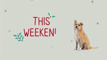 PetSmart TV Spot, 'This Weekend: Last-Minute Gifts' - Thumbnail 7