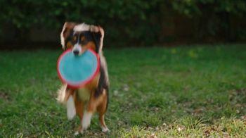 Jackson Hewitt TV Spot, 'Dog Wall of More' - Thumbnail 2