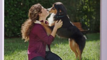 Jackson Hewitt TV Spot, 'Dog Wall of More' - Thumbnail 4