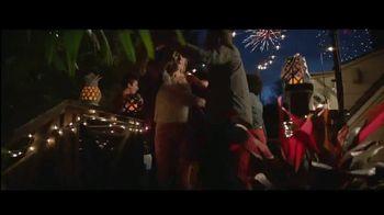 Big Lots TV Spot, 'Party: Plant Stands' - Thumbnail 7