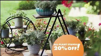 Big Lots TV Spot, 'Party: Plant Stands' - Thumbnail 9