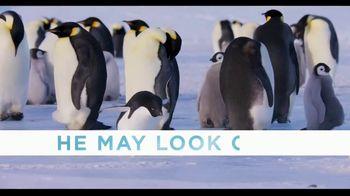 Penguins - Alternate Trailer 8