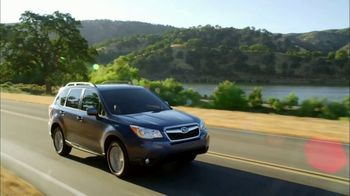 Subaru Forester TV Spot, 'PBS: A Recipe for Whatever the Day Brings' [T1] - Thumbnail 4