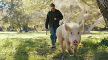 Carl's Jr. Bacon Truffle Angus Burger TV Spot, 'Pig' - Thumbnail 4