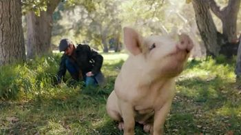 Carl's Jr. Bacon Truffle Angus Burger TV Spot, 'Pig' - Thumbnail 9
