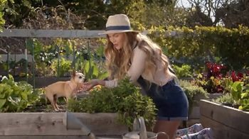 Bobs from SKECHERS TV Spot, 'Pets are Like Family' - Thumbnail 5