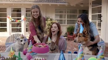 Bobs from SKECHERS TV Spot, 'Pets are Like Family' - Thumbnail 8