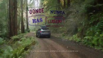 2019 Honda Passport TV Spot, 'La Passport para tus aventuras' [Spanish] [T1] - Thumbnail 5