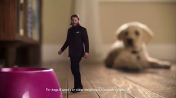 Credelio TV Spot, 'Tiny Defender of Dogs' - Thumbnail 4