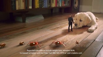 Credelio TV Spot, 'Tiny Defender of Dogs' - Thumbnail 7