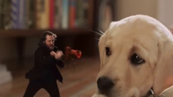 Credelio TV Spot, 'Tiny Defender of Dogs' - Thumbnail 8