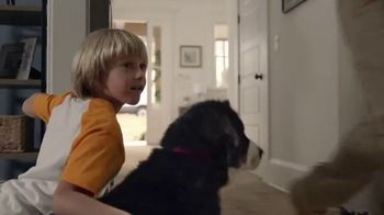 The Home Depot TV Spot, 'Replace Your Carpet' - Thumbnail 6