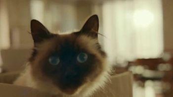 Iams TV Spot, 'Who I Am: Izzy' - Thumbnail 1