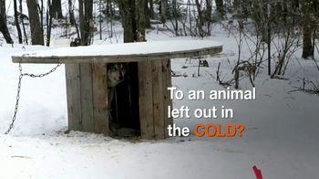 ASPCA TV Spot, 'Would You?' - Thumbnail 1
