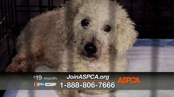 ASPCA TV Spot, 'Would You?' - Thumbnail 4