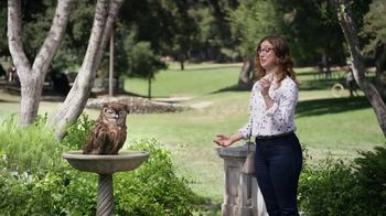 America's Best Contacts and Eyeglasses Designer Sale TV Spot, 'Bird Bath' - Thumbnail 3