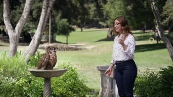 America's Best Contacts and Eyeglasses Designer Sale TV Spot, 'Bird Bath' - Thumbnail 4