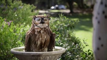 America's Best Contacts and Eyeglasses Designer Sale TV Spot, 'Bird Bath' - Thumbnail 9
