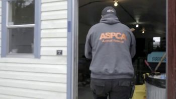 ASPCA Prevention of Cruelty to Animals Month  TV Spot, 'Every Year' - Thumbnail 3