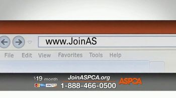 ASPCA Prevention of Cruelty to Animals Month  TV Spot, 'Every Year' - Thumbnail 4