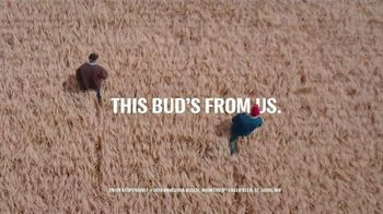 Budweiser TV Spot, 'Proudly Brewed With 100 Percent American Grown Barley' - Thumbnail 10