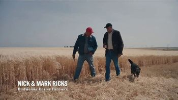 Budweiser TV Spot, 'Proudly Brewed With 100 Percent American Grown Barley' - Thumbnail 7