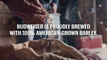 Budweiser TV Spot, 'Proudly Brewed With 100 Percent American Grown Barley' - Thumbnail 9