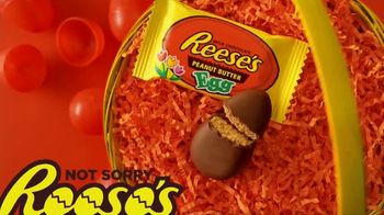 Reese's Peanut Butter Egg TV Spot, 'Easter: In Plain Sight' - Thumbnail 10
