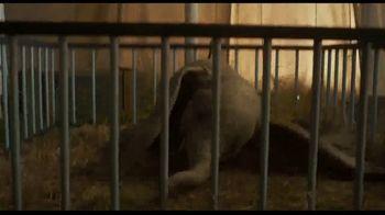 Dumbo - Alternate Trailer 10