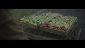 Gainbridge TV Spot, 'Tulips' - Thumbnail 1