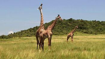 Metro by T-Mobile TV Spot, 'Basketball Giraffes' Song by Usher - Thumbnail 6