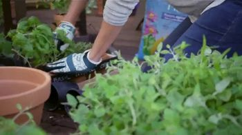 The Home Depot TV Spot, 'Today Is the Day for Doing: Herbs & Vegetables' - Thumbnail 6