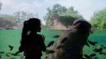 Busch Gardens Tampa Bay TV Spot, 'Experience Wild Life and Wild Rides: BOGO' - Thumbnail 3