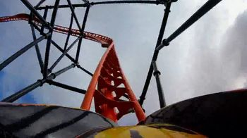 Busch Gardens Tampa Bay TV Spot, 'Experience Wild Life and Wild Rides: BOGO' - Thumbnail 5