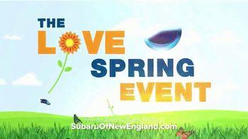 Subaru Love Spring Event TV Spot, 'Celebrate' [T2] - Thumbnail 5